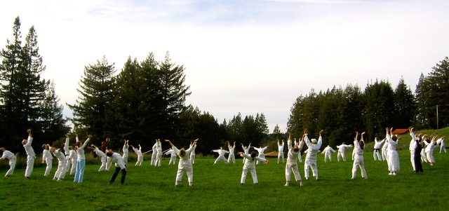 Shintaido practitioners in a circle on a grassy field.