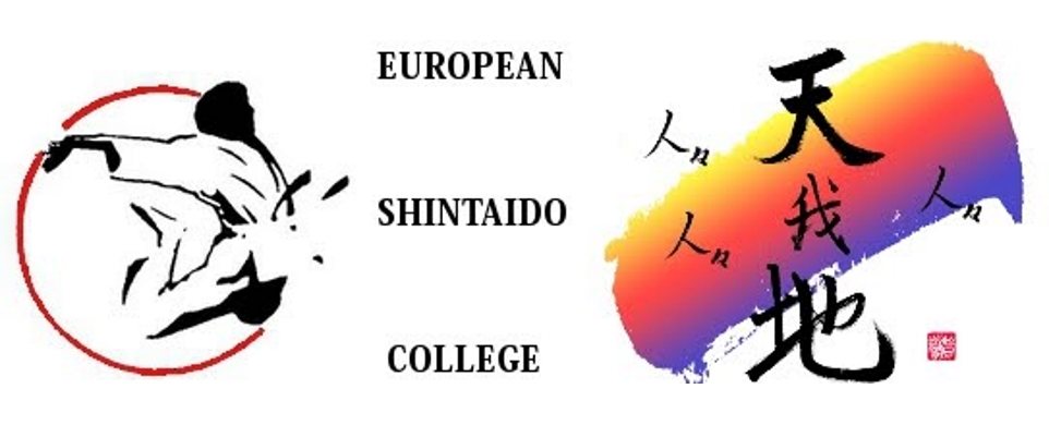 European Shintaido College 2019 in Reims, France November 1-3